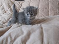 Eline three weeks old