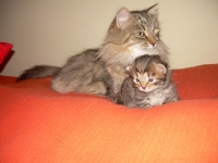 Luisa 16 days old, with mother Natalija